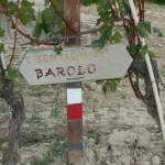 I sentieri di Barolo