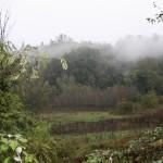 Morgentlicher Herbstnebel in Castellino Tanaro
