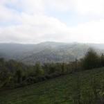 Die Langhe hinter Castellino Tanaro