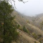 Herbstnebel im Valle Maira