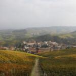 Barolo im Piemont