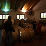 Im Keller der Azienda Agricola Negretti in La Morra