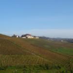 Im Herzen des Dolchetto-Gebietes