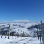 Schneebedeckte Weinberge im Barolo