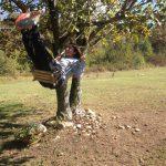 Juhuuu - Schaukeln im Garten :-)