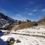 Eine Alpenweide im Valle Tanaro