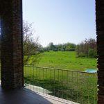 Blick in den Garten und auf den alten Pool