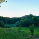 Garten Nordfläche Ferienhaus Piemont